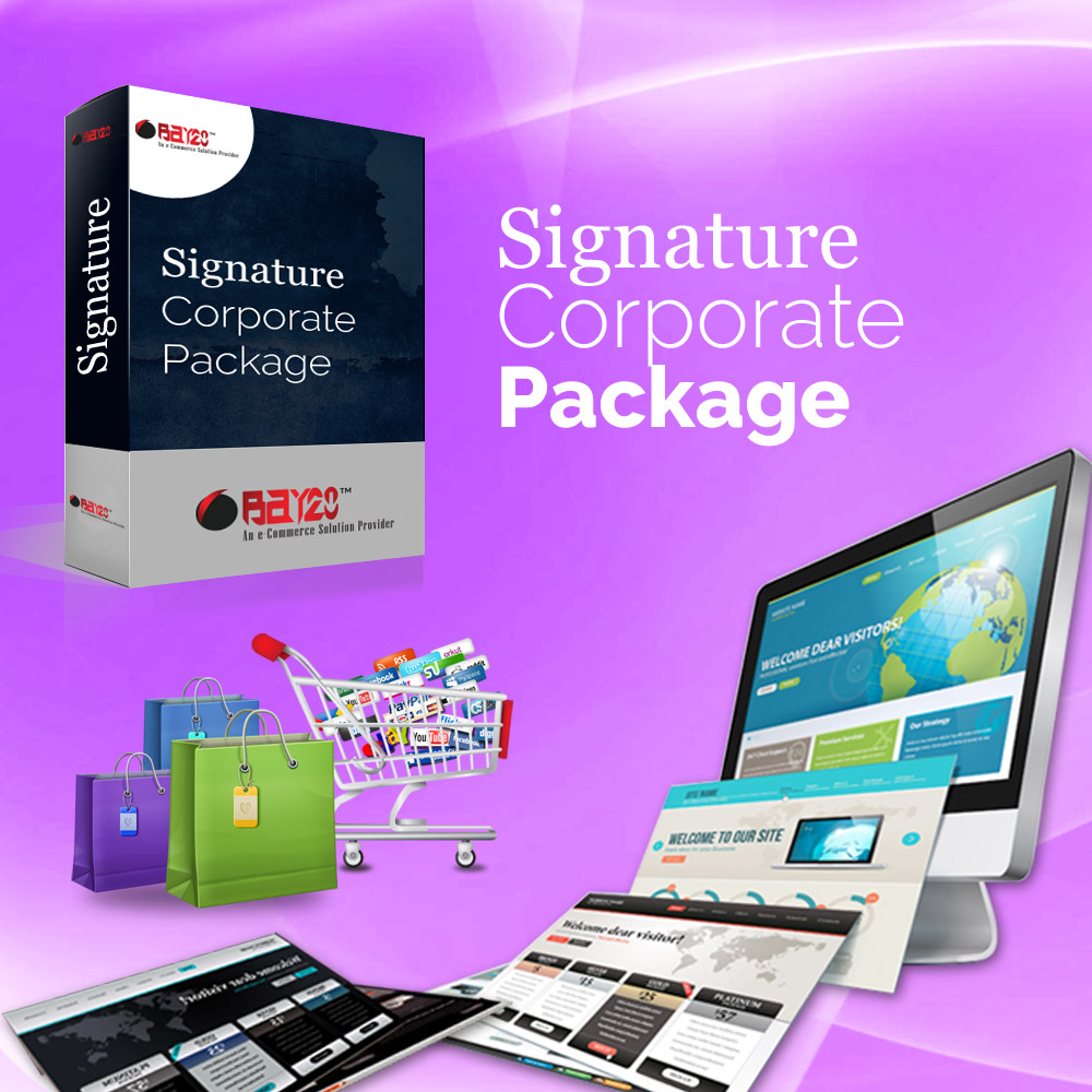 Professional Corporate Package