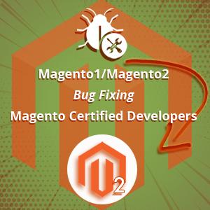 Magento1 Magento2 Bug Fixing
