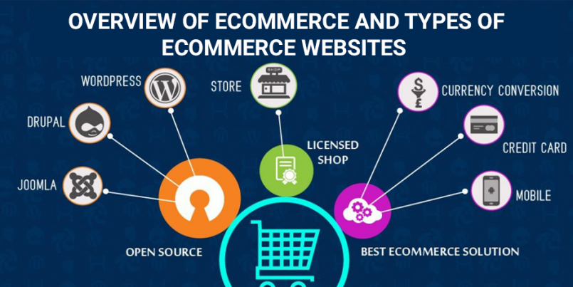 Overview eCommerce Types of eCommerce Websites
