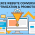 eCommerce Website Conversion Rate Optimization & Promotion