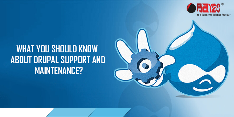 What you should know about Drupal Support and Maintenance