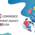 Woocommerce development agency USA